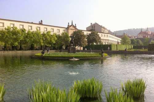 вальдштейнский дворец и сад: павлины с раскрытым хвостом в праге